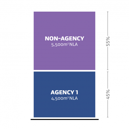 A representation of one agency (Agency 1) occupying 45% of the Net Leased Area (NLA) and a non-agency occupying 55% of the Net Leased Area (NLA).