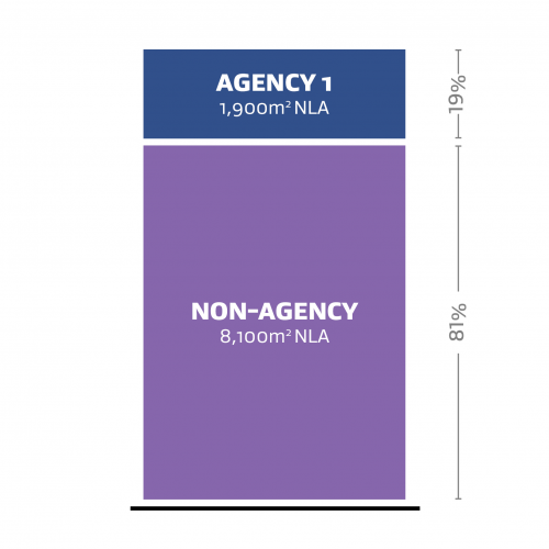 A representation of one agency (Agency 1) occupying 19% of the Net Leased Area (NLA) and a non-agency occupying 81% of the Net Leased Area (NLA).
